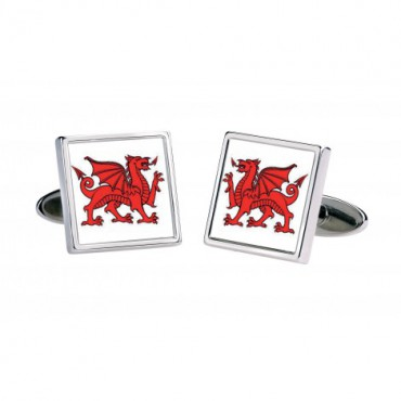 Others Sonia Spencer Welsh Dragon £30.00